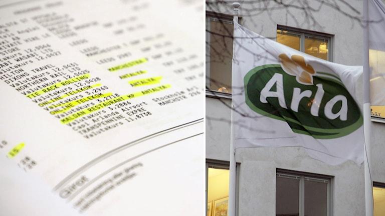 UG granskar Arlas representation. Foto: SVT