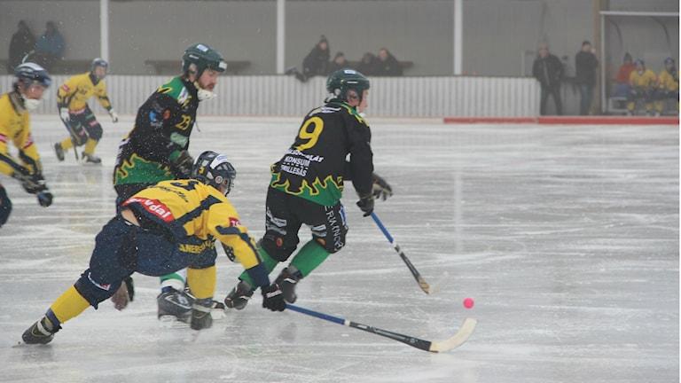 Bandy Allsvenskan Södra Frillesås-Blåsut.