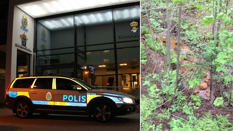16-åringen hittades död i Frennarpsskogen. Den 18-årige man som suttit anhållen, misstänkt för medhjälp till mordet på en 16-åring i Halmstad, är försatt på fri fot. Foto: Sveriges Radio.