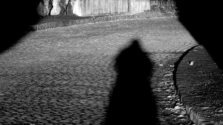 Skugga av en man i tunnel. Foto. Hasse Holmberg/TT.