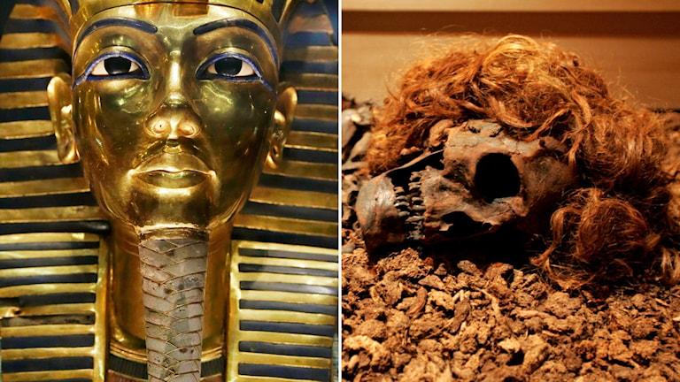 Bockstensmannen och Tutankhamun.