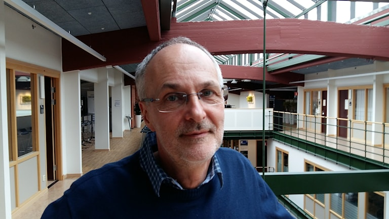 Magnus Tideman, professor i handikapp vetenskap, Halmstad Högskola