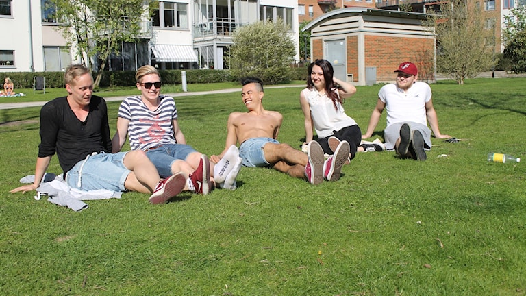 Sex studenter sitter i gräset och njuter