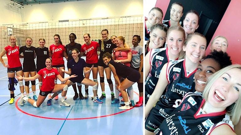 """Hylte/Halmstads damer står framför ett volleybollnät på ena bilden, och tar en """"groupie"""" på andra bilden."""