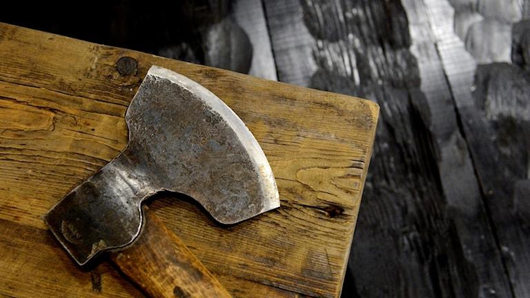Yxa som ligger på en träbänk. Foto: Henrik Montgomery/TT.