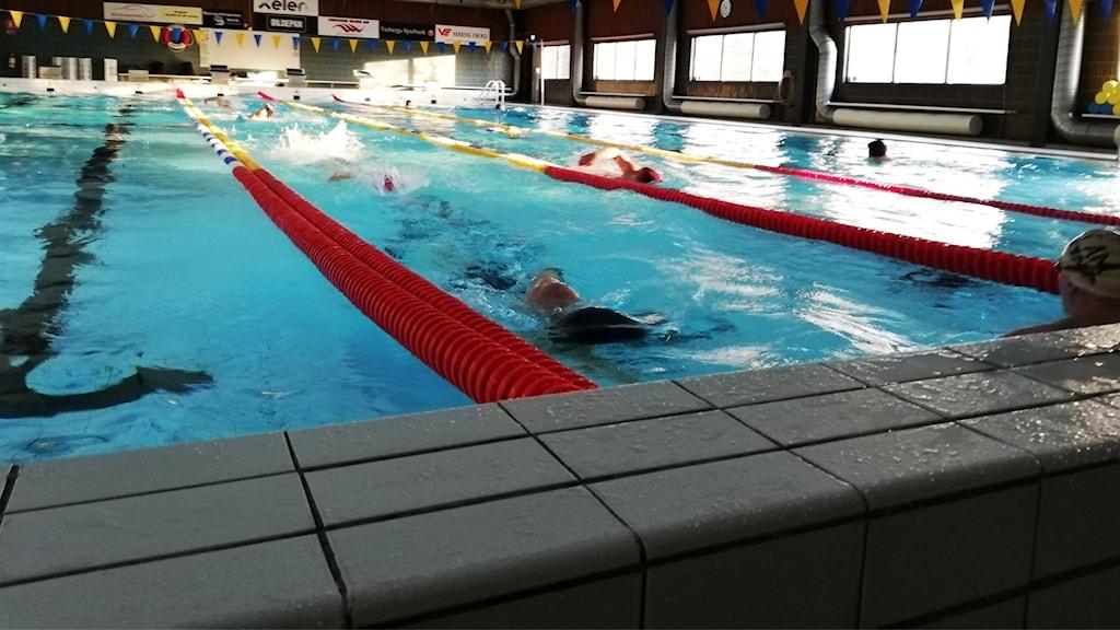 Personer simmar i en simhall.