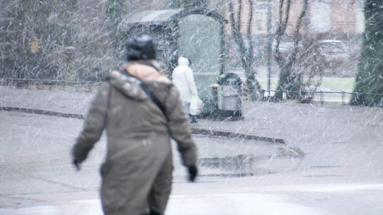 Snön börjar vräka ner i starka vindar.