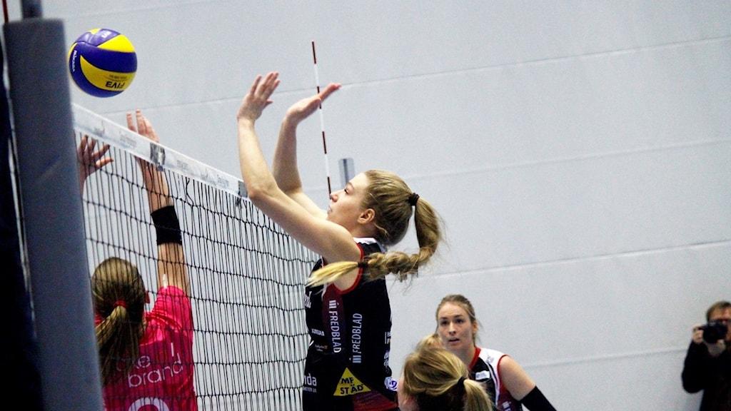 Hylte/Halmstad Volleyboll.