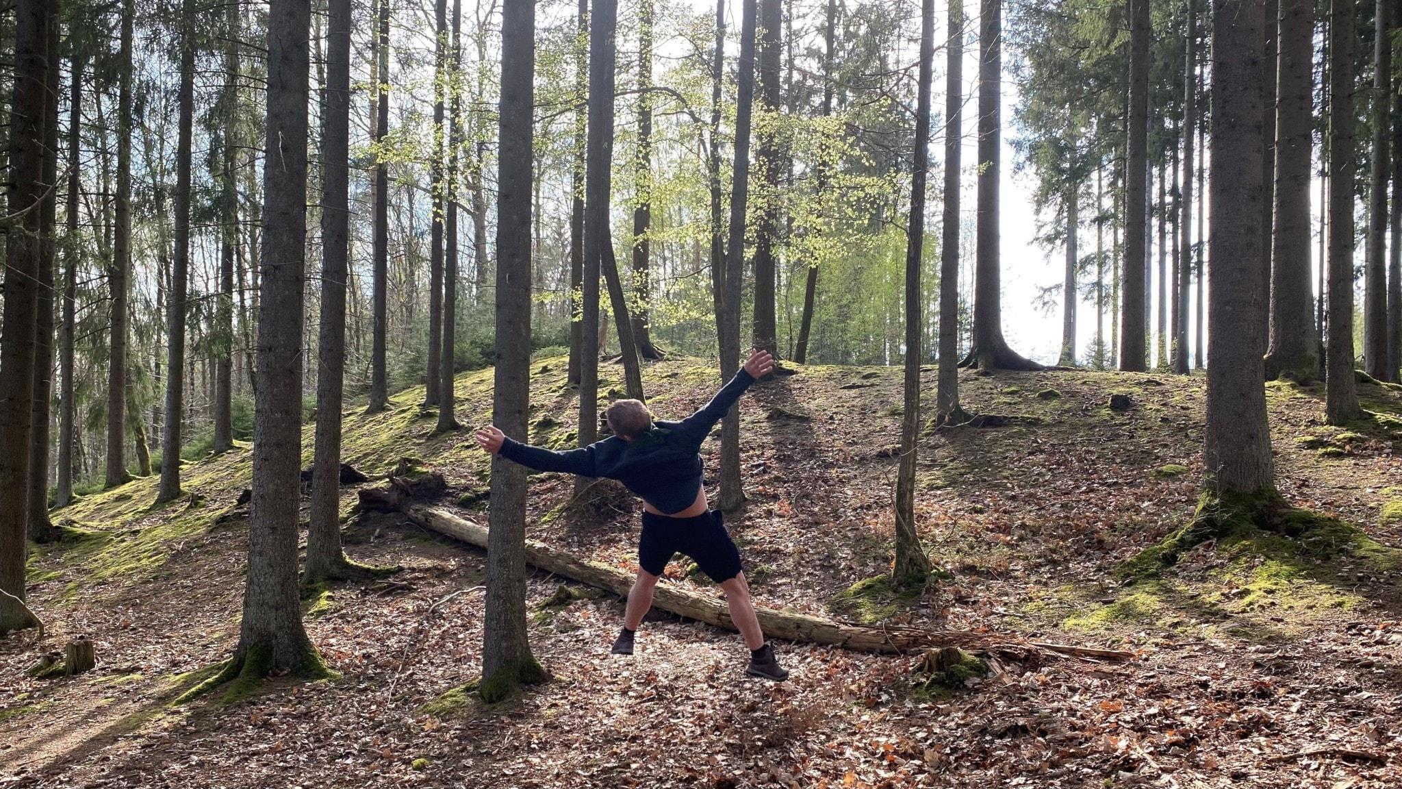 mötesplatser för äldre i skog