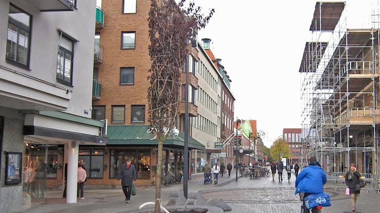 Träd planteras på Storgatan i Halmstad.