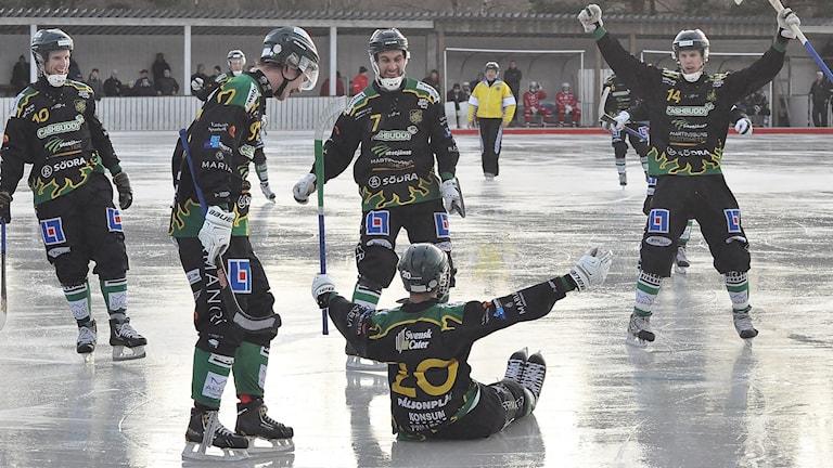 Frillesås bandy jublar efter mål mot Lidköpings AIK. Foto: Lars-Johan Svanström.