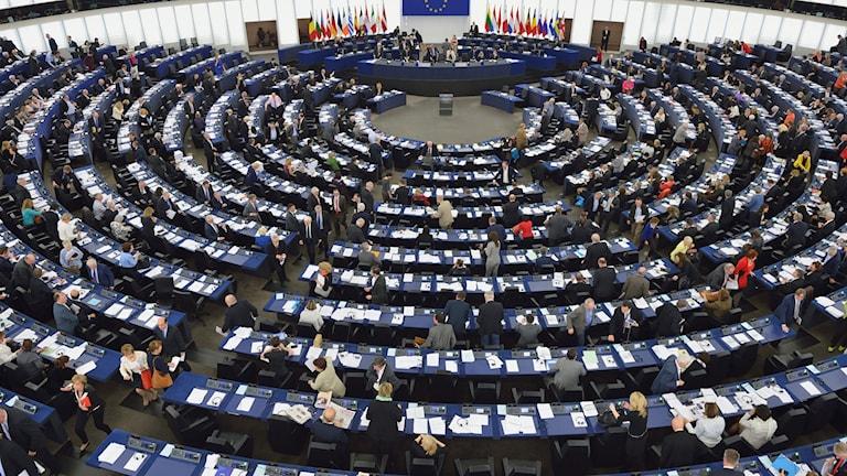 Bild från Europaparlamentet.
