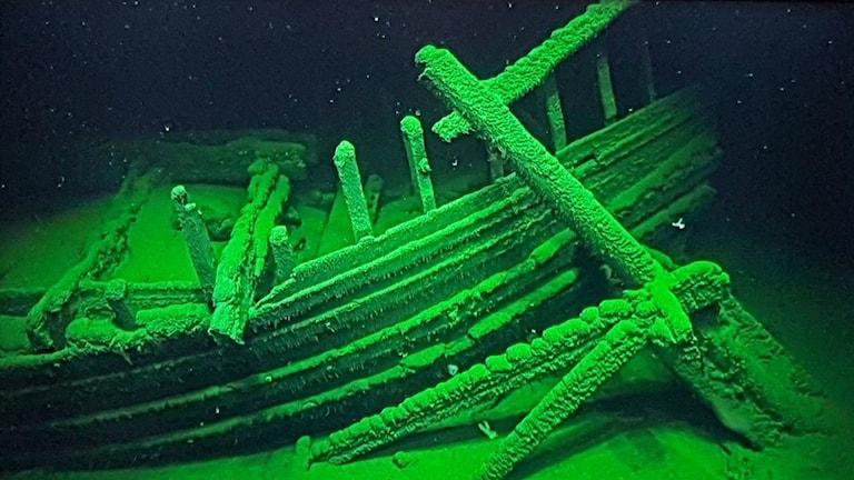 Ett 2000 år gammalt romerskt vrak på 2000 meters djup. Sidorodret med sin rorkult fortfarande fäst.