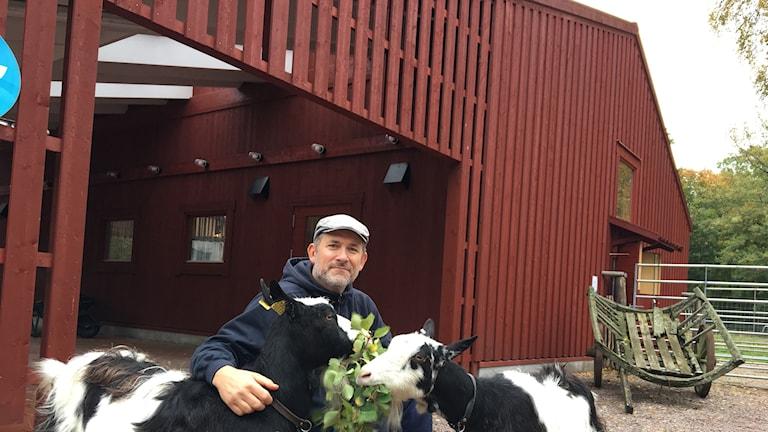 Niklas Johansson, gårdskarl, tilsammans med getterna Ada och Lucia. Djurhuset bakom är ritat av what! arkitektur.