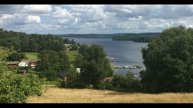Småbåtshamnen ligger nära vattenintaget i Lygnern. Foto: Sveriges Radio