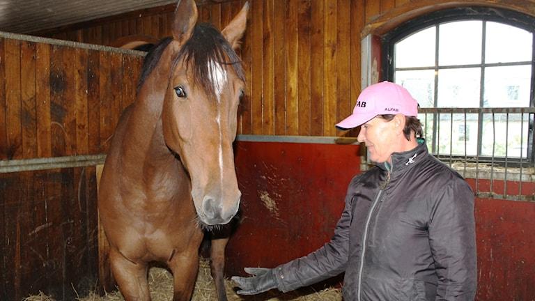 Pia Levin i rosa keps bredvid en brun häst med vita tecken.
