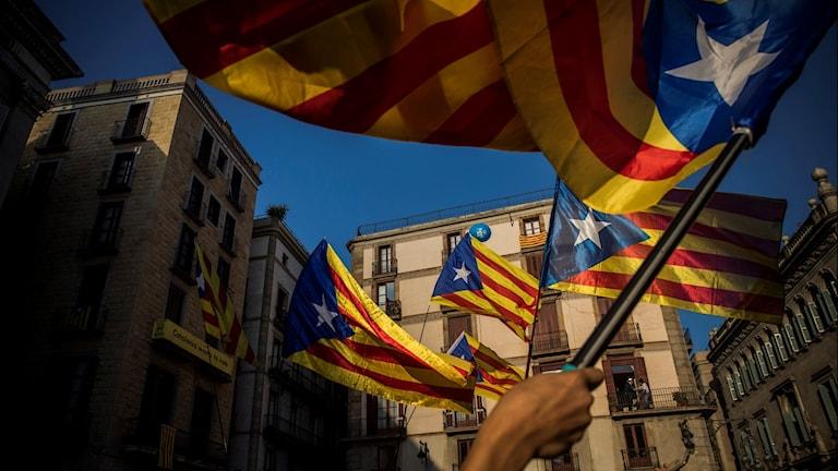 Katalonien flagga