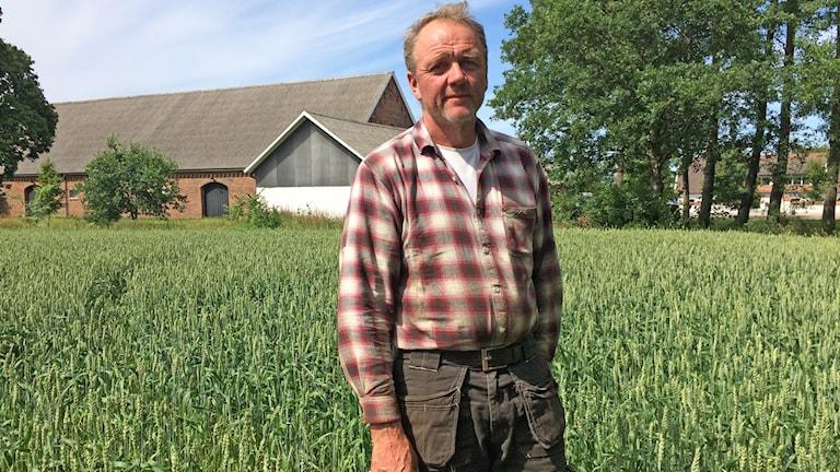 Magnus Pålsson är en av de som återupptagit sin ärtodling.