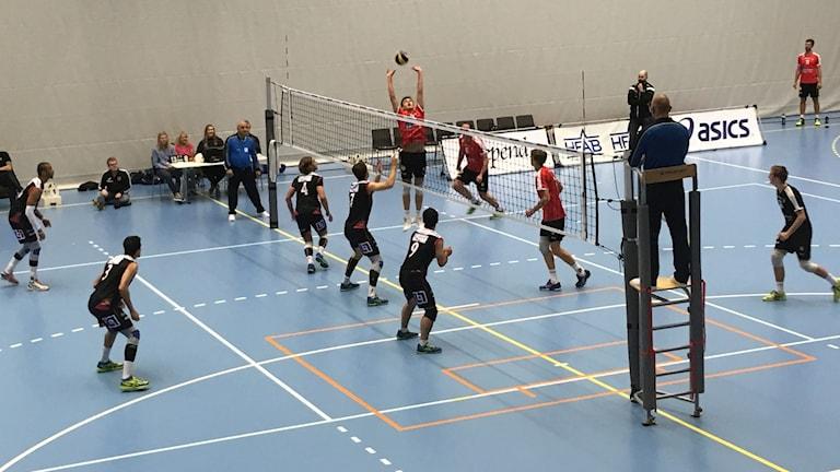 Volleybollmatch mellan Hylte/Halmstad och Lund.