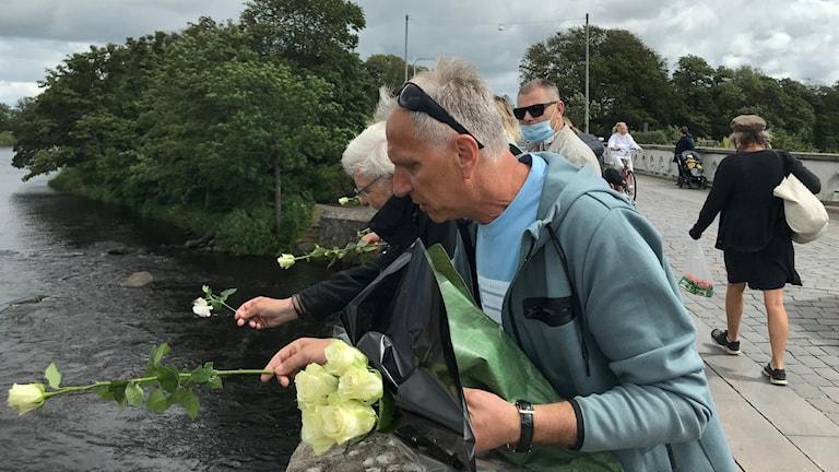 Människor kastar vita rosor i å.