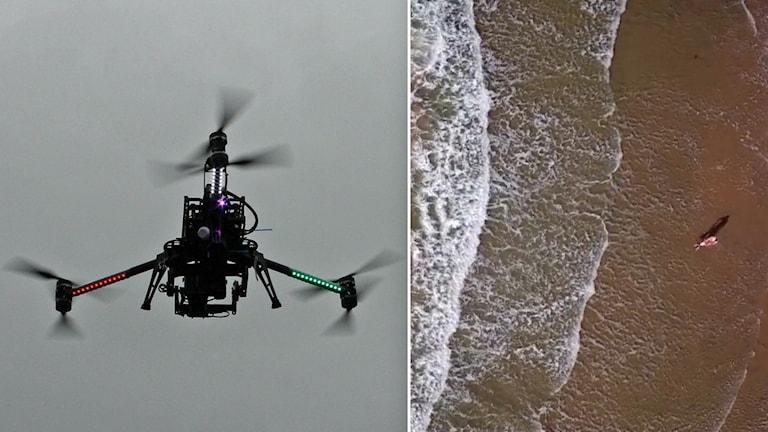 En drönare - och en man filmad ovanifrån i havet.