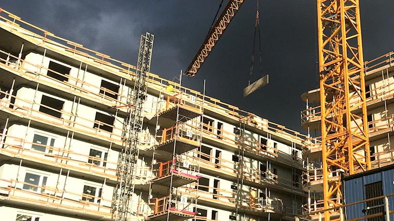 Bostadsbygge av lägenheter