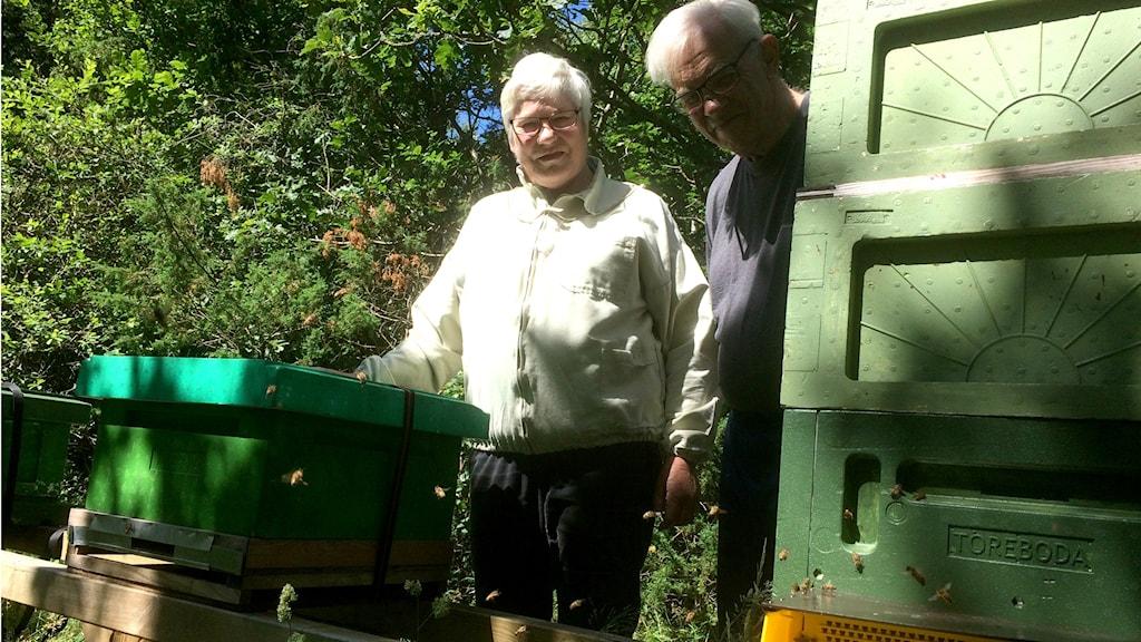 Marie Louise Simonsson och Bror Simonsson, biodlare i Kungsbacka.