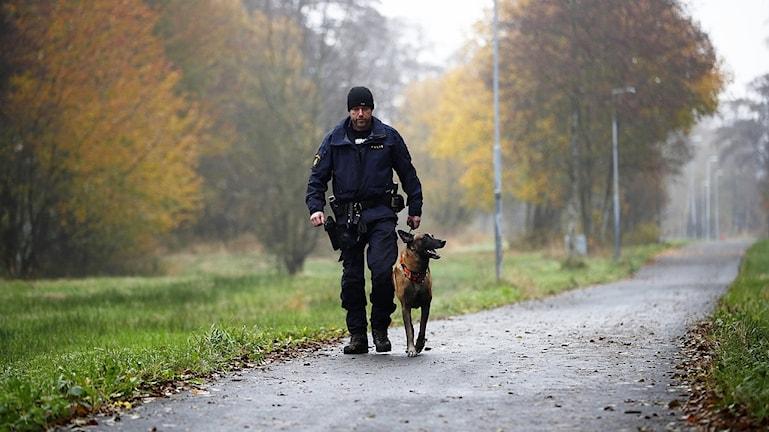 Polis söker efter Dante med hund.
