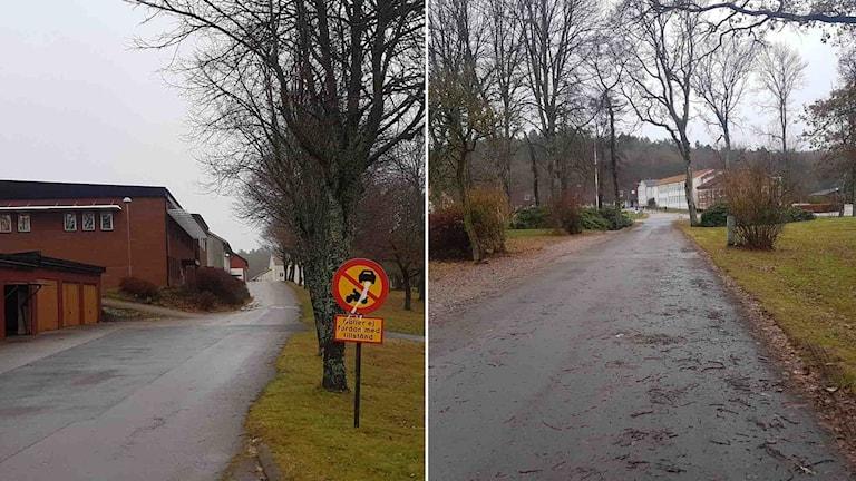 Den 15-årige pojken föll ihop livslös på väg till skolbussen vid Plönningeskolan.