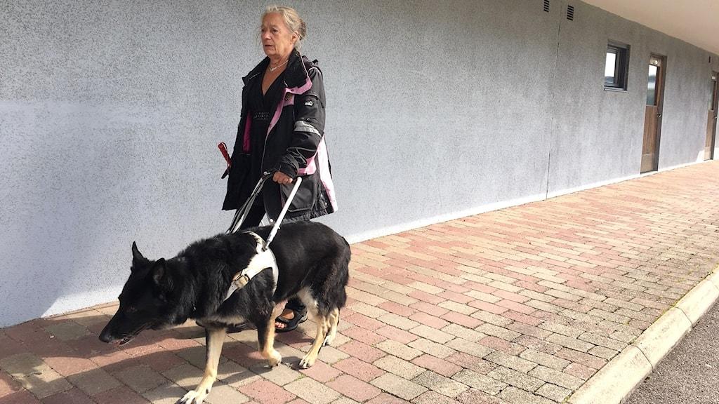 Ledarhunden Manna med matte Anne Engvall.