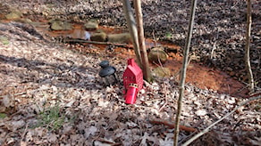 Frennarpsmordet, platsen där 16-åringen hittades vid bäcken.