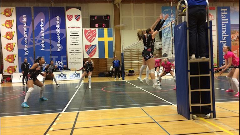 Hylte/Halmstad får inrikta sig på bronsmatchen.