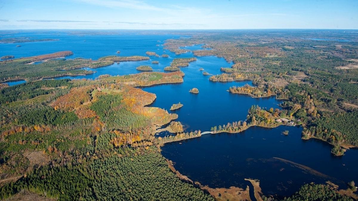 Sjön Bolmen