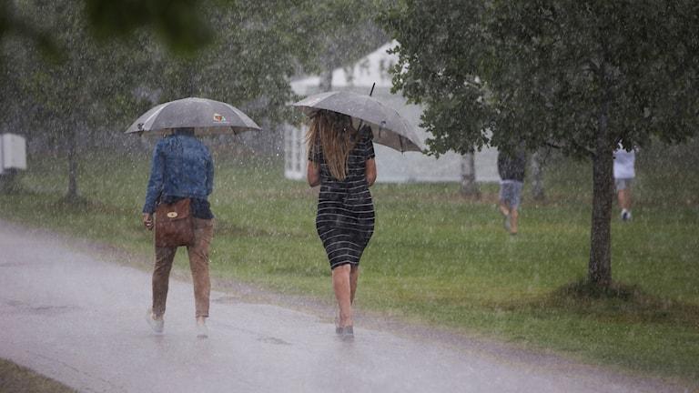 Två personer går i regn med paraplyer uppfällda.