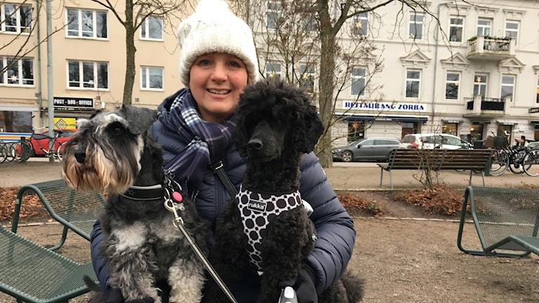 Malin Grönberg och hundarna Eddie och Gizmo tycker att en ljus- och ljudshow skulle vara bra då hunden Gizmo blir stressad på nyårsafton.