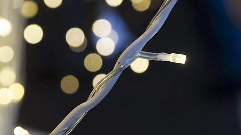 närbild på en ljusslinga