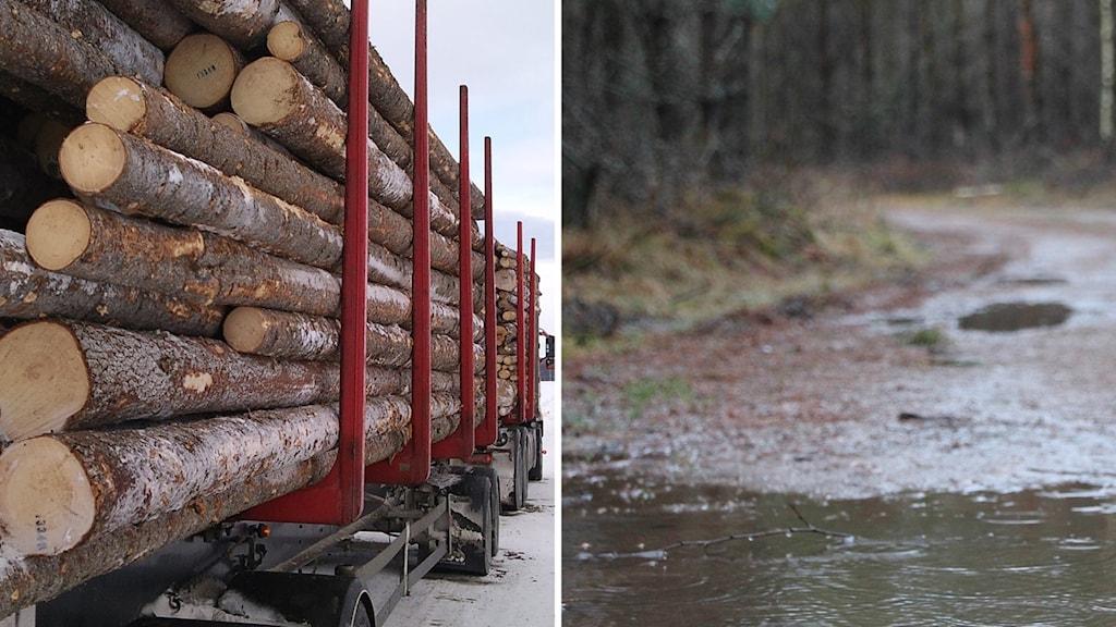 Vi har det besvärligt i skogsbruket med att vägarna blir kladdiga och blöta och svåra att transportera virke på, säger Thomas Davidsson