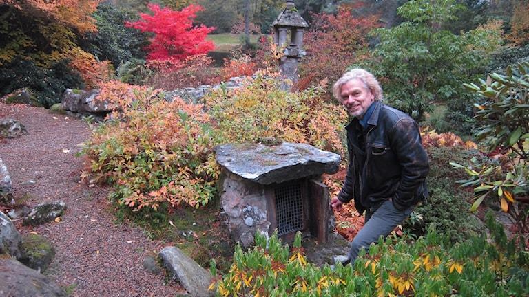 Den japanska trädgården, inte Ruths favorit.. Foto: Göran Frost/Sveriges Radio