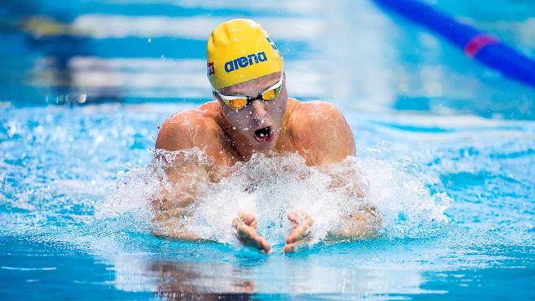 Erik Persson simmar 100 m bröst under kortbane-EM 2015.