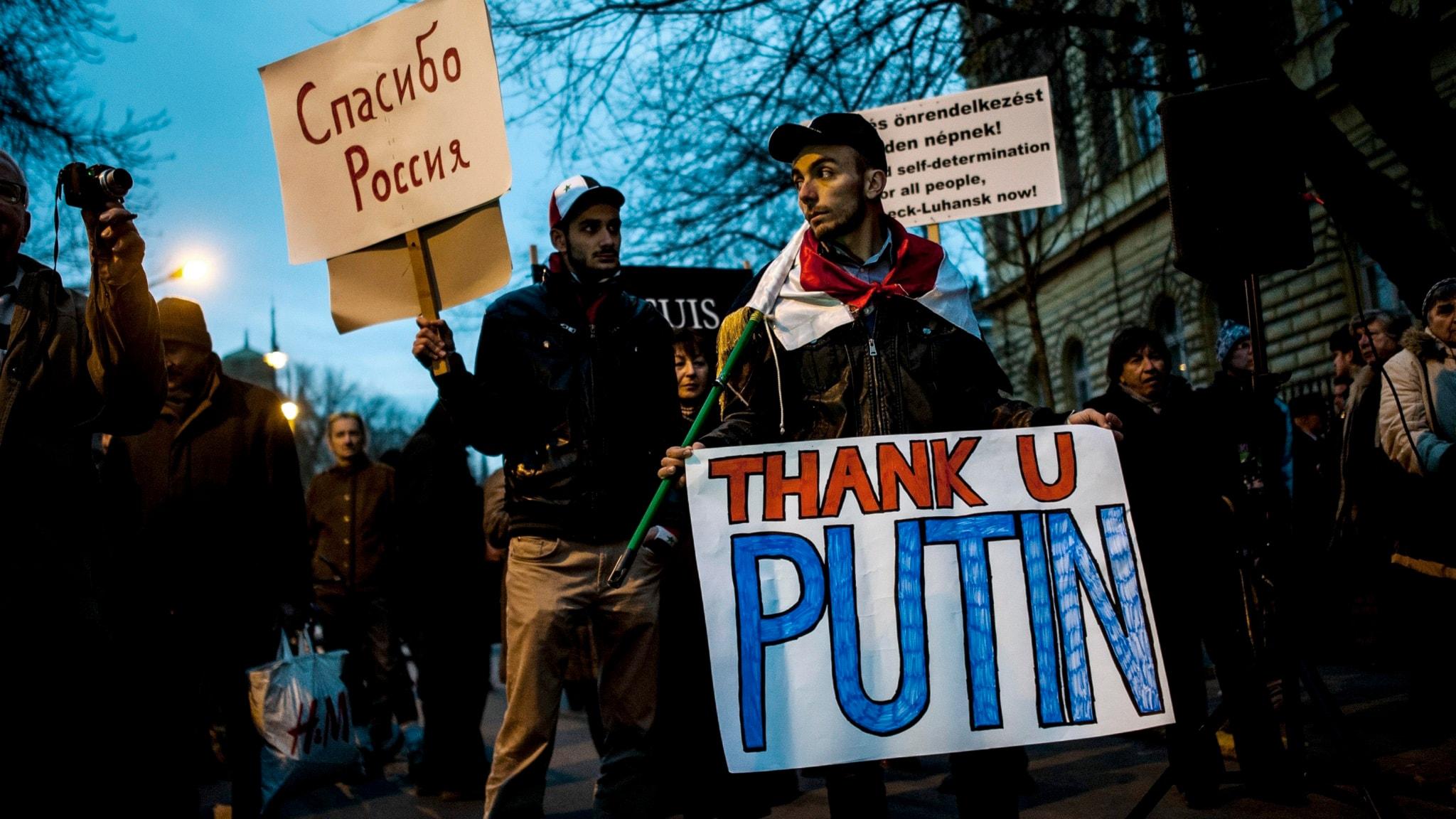 Pro-ryska ungrare visar sin tacksamhet till Rysslands president Vladimir Putin när han besökte Ungern i veckan. Foto: Janos Marjai/TT.