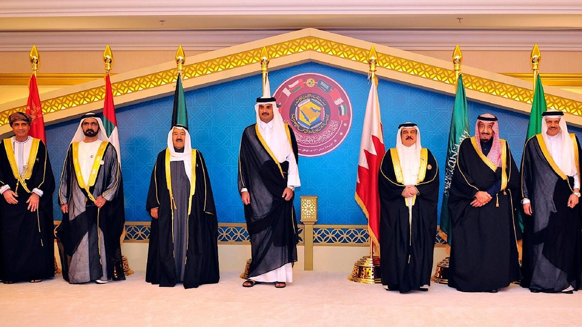 Möte mellan Gulfstaternas ledare i december 2014. Foto: AP.