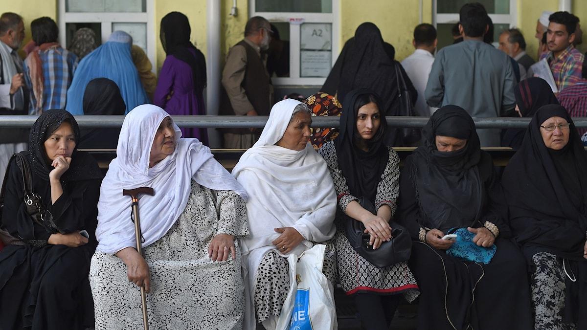 Bild från ett passkontor i Kabul i augusti 2015. Foto: Shah Marai/TT.