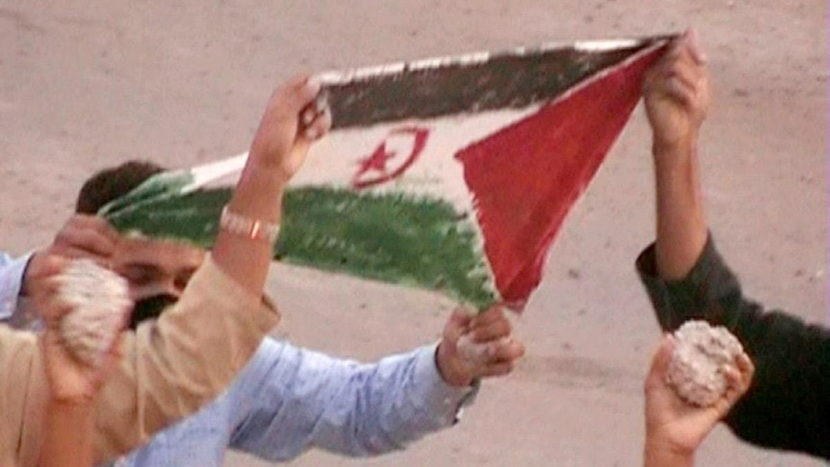 Västsaharier demonstrerar för självständighet. Foto: Saharisk aktivist/TT.
