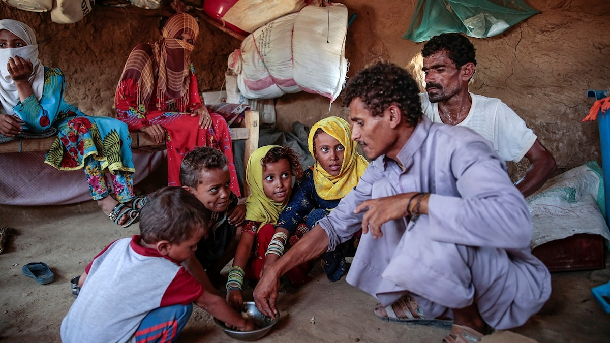 In this Oct. 1, 2018, photo, a man feeds children Halas, a climbing vine of green leaves, in Aslam, Hajjah, Yemen. The leaves are made into green paste and used to be a traditional side dish, but at times of extreme poverty, it becomes the main meal. (AP Photo/Hani Mohammed)