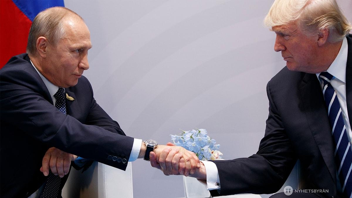 President Donald Trump och President Vladimir Putin skakar hand i Hamburg.