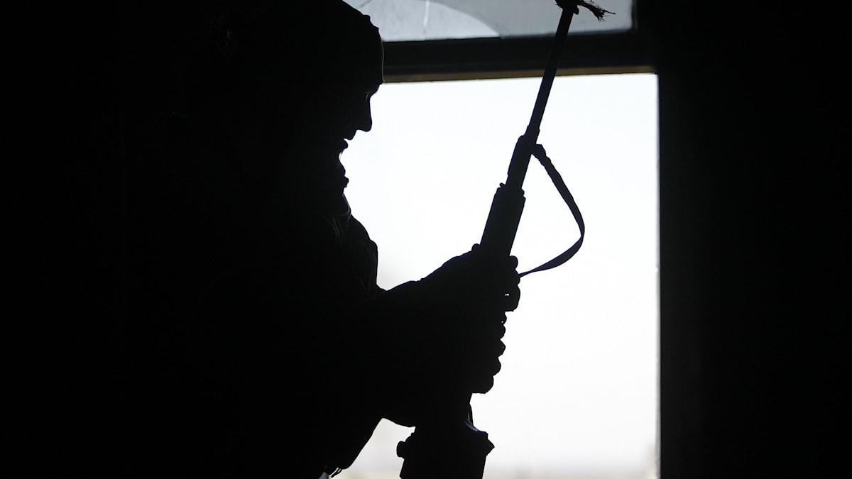 sniper ukraina
