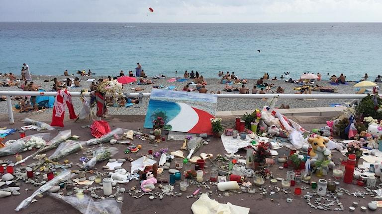 Blommor på strandpromenaden i Nice
