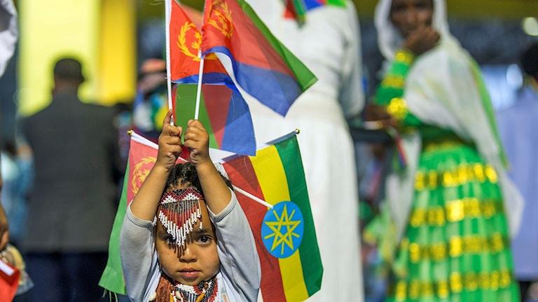 En etiopisk flicka håller upp Etiopiens och Eritreas flaggor i Addis Abeba i juli förra året.