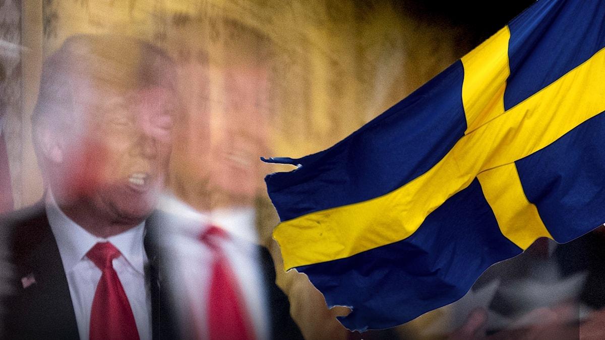 Sverigebilden Kaliber 8 oktober