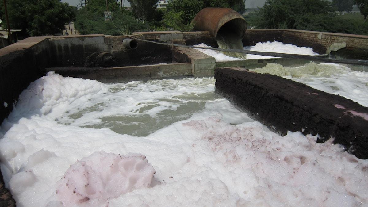Förorenat vatten, Kanpur, Indien